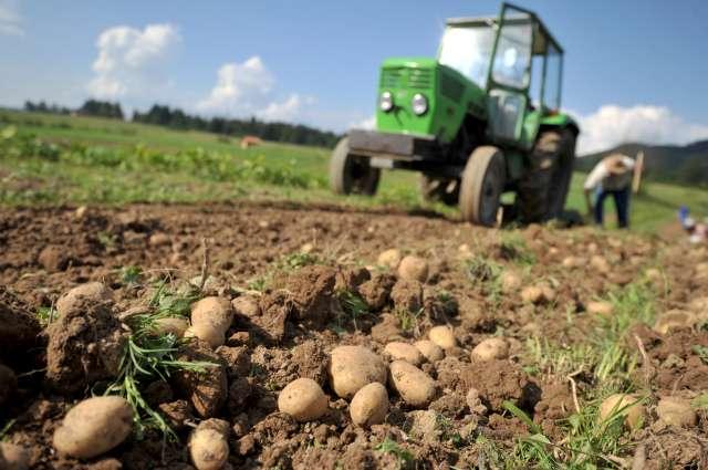 Novosti sprejemnega zakona o kmetijstvu
